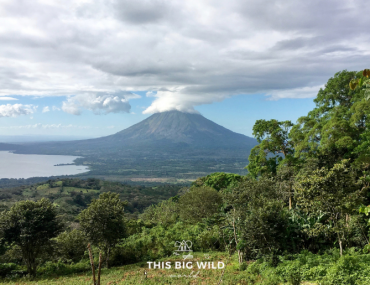 Enjoy beautiful views of Volcan Concepcion from atop Volcan Maderas on Ometepe Island.