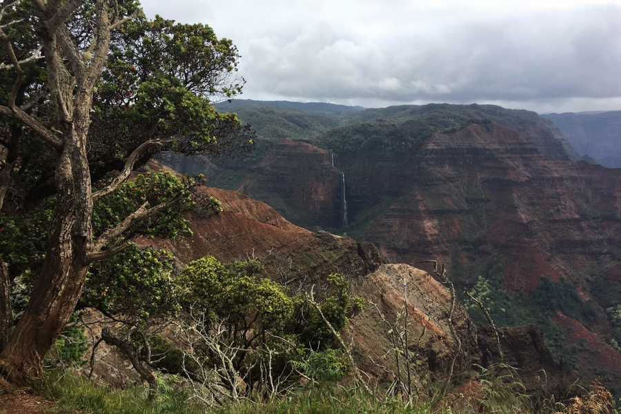 Image of Waimea Canyon with a waterfall in the distance.