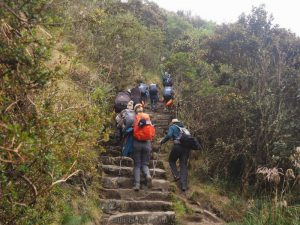 Image of our group climbing up stairs on Day 3 of the Inca Trail hike in Peru.