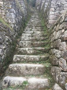 Image of steep stairs on the Inca Trail hike in Peru.