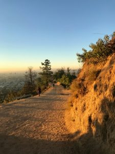 Image of empty hiking trails at Griffith Observatory at sunrise in LA.
