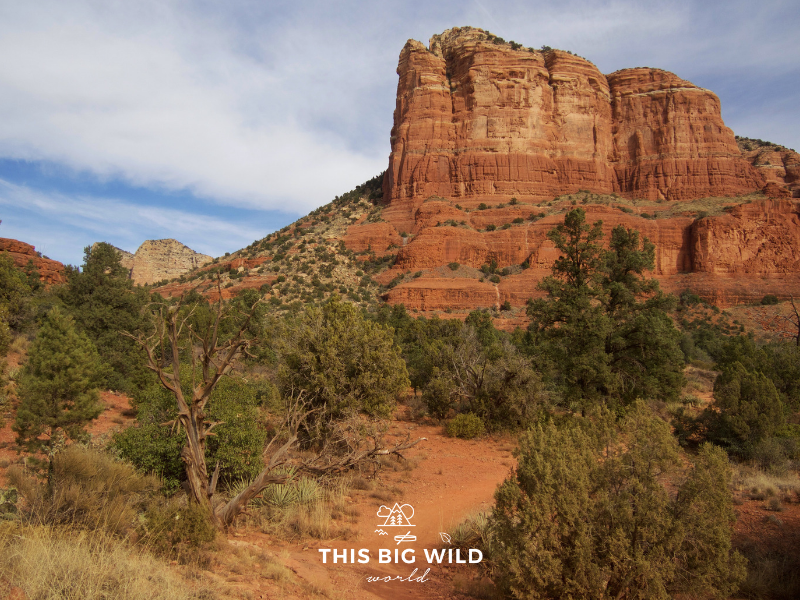 The beautiful red rocks of Sedona are a must-visit on any Los Angeles to Denver road trip!