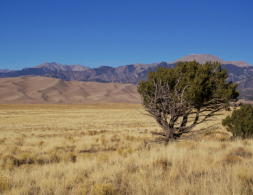 Image of the dunefield in front of the mountains from the road as you enter Great Sand Dunes National Park in Colorado.