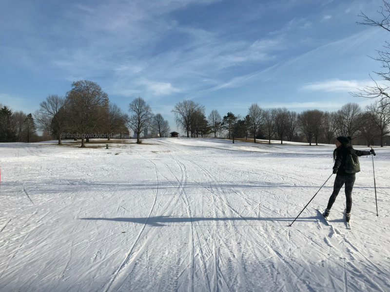 Cross-country skiing in Minneapolis, Minnesota. Enjoy the snowfall in Minnesota at Theodore Wirth Park.