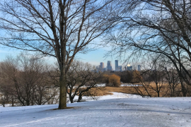 Image of Minneapolis Minnesota skyline as seen from cross-country skiing trails at Theodore Wirth Park.