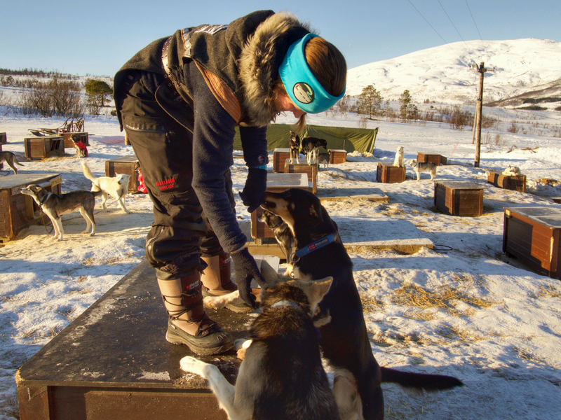 One of the dog sledding trainers with her dogs in the dog yard at Tromso Villmarkssenter.