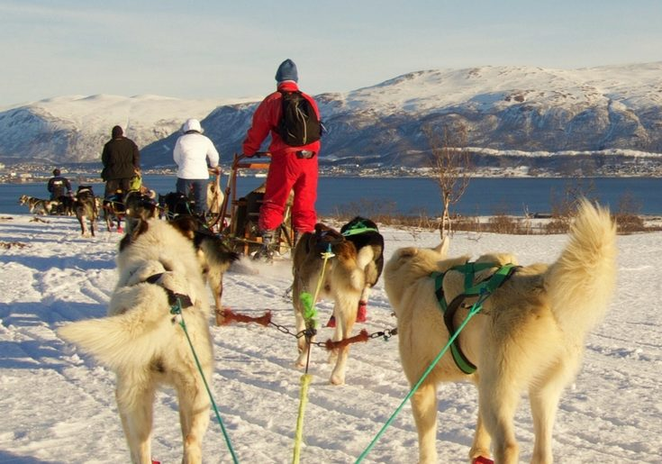 From dog sledding to chasing the Northern Lights, there are so many adventurous things to do in Tromso Norway. This post includes honest reviews of tours in Tromso, where to stay in Tromso, and other tips on things to do in Tromso.