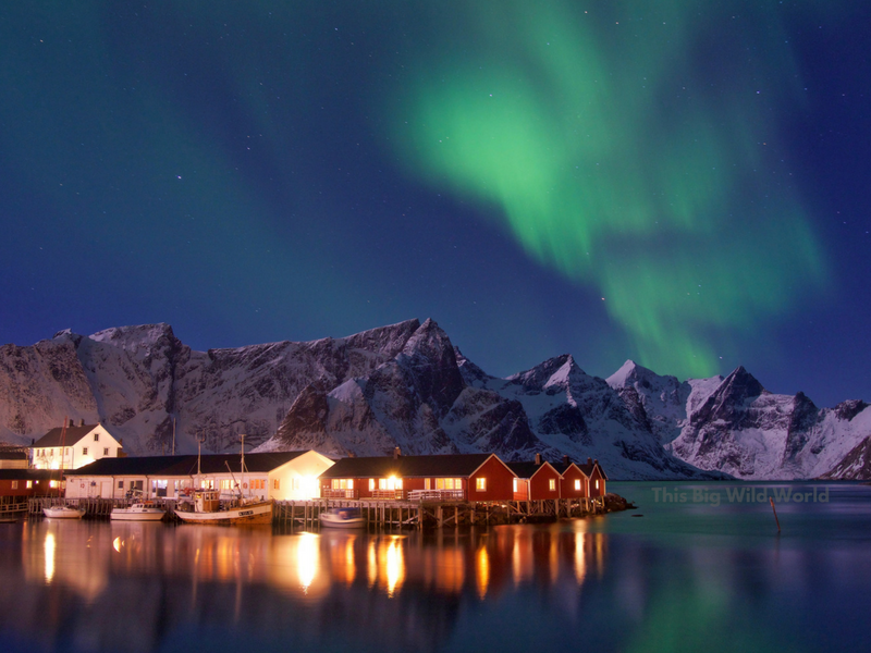 The Northern Lights danced across the sky in the Lofoten Islands in Norway. Photographed using a mirrorless camera with a tripod.