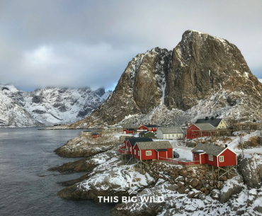 Explore the stunning landscape of the Lofoten Islands, Norway. Hamnoy is a fishing village with the iconic red fisherman's cabins along the fjords.