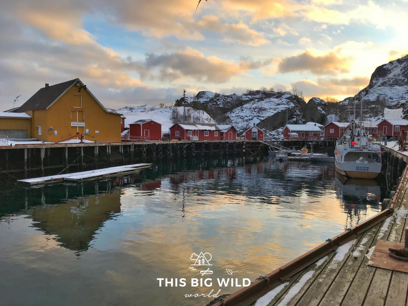 I fell in love with Nusfjord, a small fishing village in the Lofoten Islands Norway.