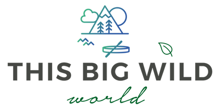 This Big Wild World | Travel Blog