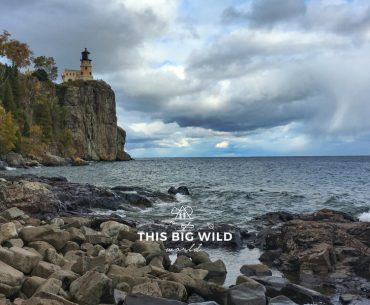 Split Rock Lighthouse along Lake Superior during the peak of fall colors.