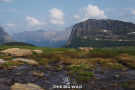 The view of the mountains and melting snow from the Hidden Lake trail at Glacier National Park is amazing!