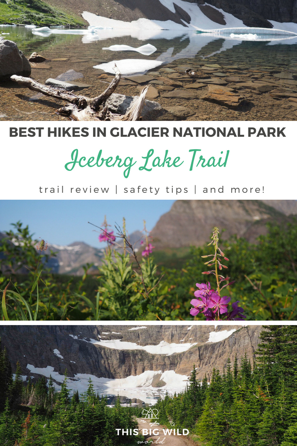 Is the Iceberg Lake Trail one of the best hikes in Glacier National Park? Everything you need to know about hiking the Iceberg Lake Trail in this trail review including safety tips, photos and more!
