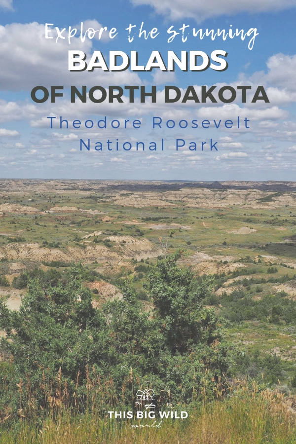 The Badlands aren't just a South Dakota thing. Explore the stunning Badlands of North Dakota at Theodore Roosevelt National Park. From bison to prairie dogs to wild horses and more, this park will take your breath away. See the highlights with this one day itinerary! #badlands #northdakota