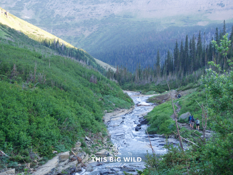 The beginning of the Siyeh Pass Trail, one of the best hikes in Glacier National Park.
