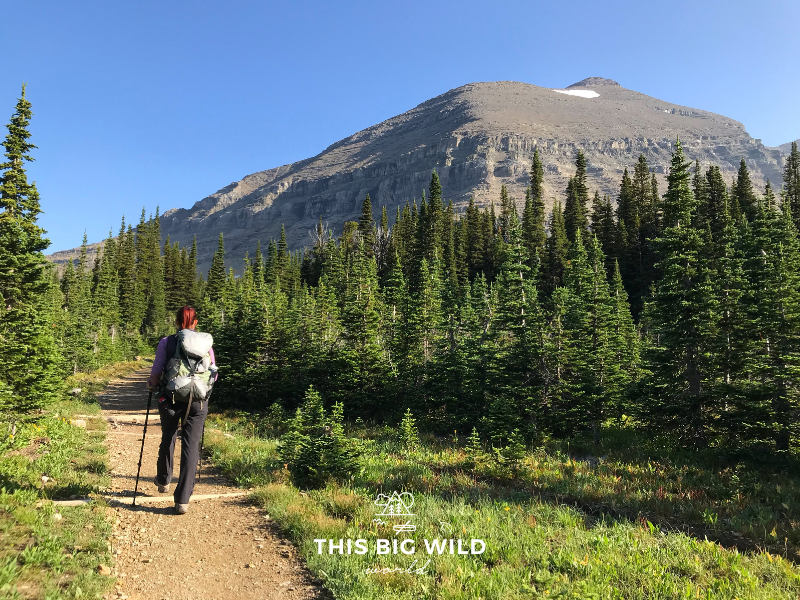 Hiking through the alpine meadows of Preston Park along the Siyeh Pass Trail in Glacier National Park.
