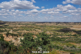 The Painted Canyon Overlook in Theodore Roosevelt National Park offers sweeping views of the North Dakota Badlands.