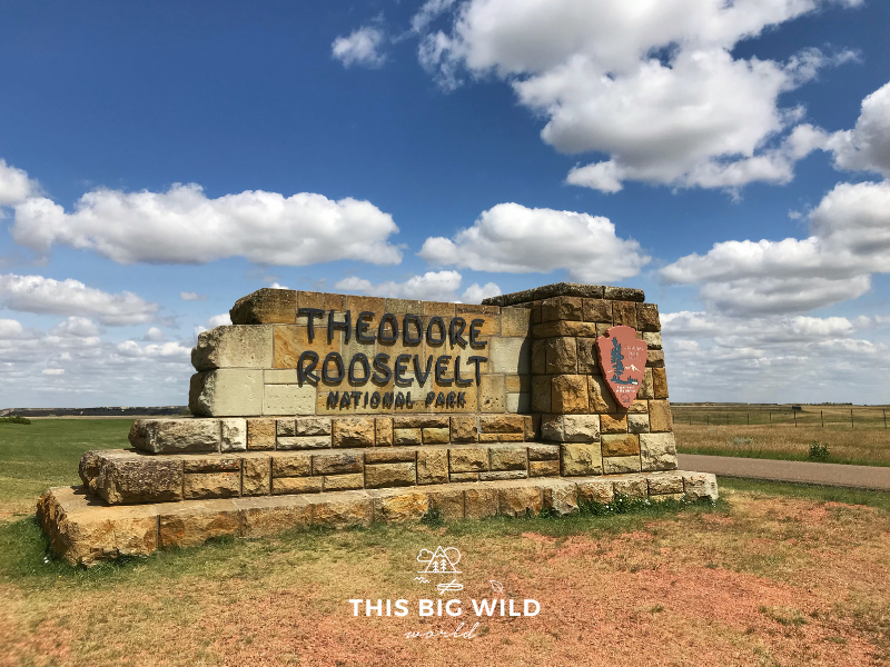 Visit the North Dakota Badlands in Theodore Roosevelt National Park.