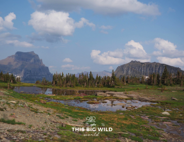 Find out what to pack for hiking in Glacier National Park!