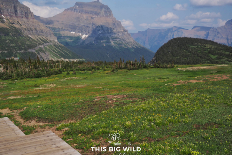 I ask experienced hikers to take advantage of teaching moments to educate on hiking etiquette, instead of getting frustrated. Photo of Hidden Lake Trail at Glacier National Park.