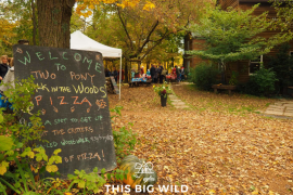 Enjoy dining under the stars at Two Pony Gardens and Pizza Farm in Minneapolis.
