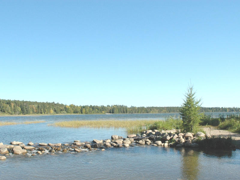 Itasca State Park in Minnesota is home to the headwaters of the Mississippi River.