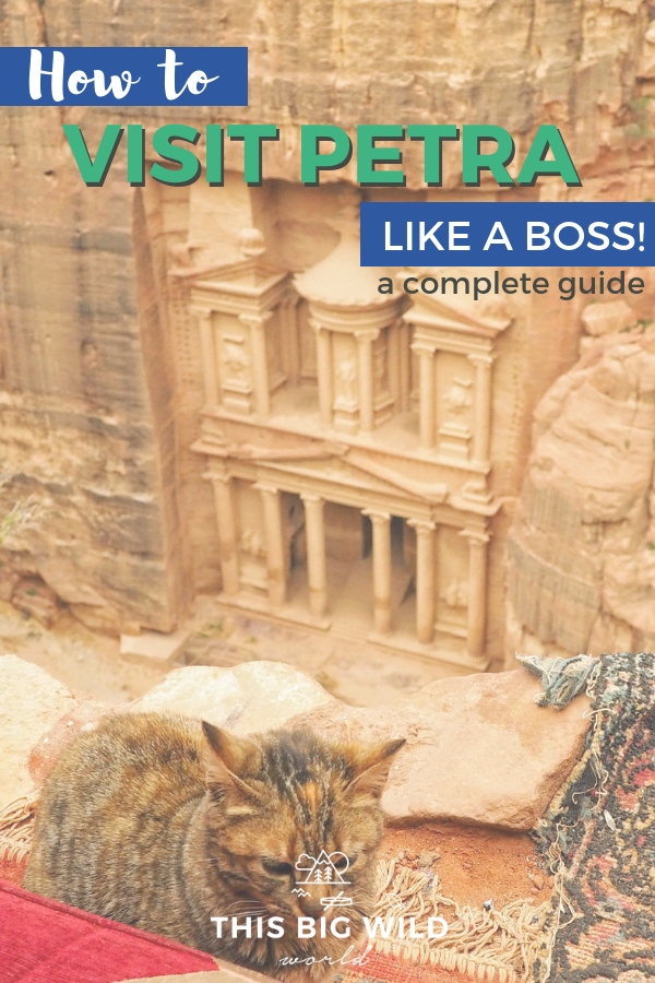 So you wanna visit Petra, but don't know where to start? This complete guide will show you how to visit Petra like a boss including boss tips on how to get to Petra, when to visit Petra, things to do in Petra (beyond the Treasury), answers to frequently asked questions about Petra and so much more! #jordan #petra #middleeast #travel