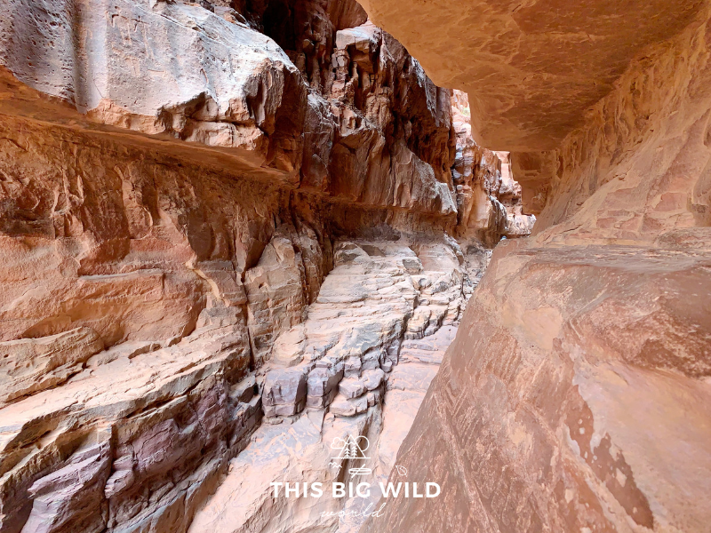 Khazali Canyon in Wadi Rum is covered in ancient petroglyphs that you can see up close.