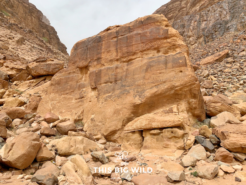 This large rock at Lawrence Spring in Wadi Rum has petroglyphs on it from thousands of years ago.