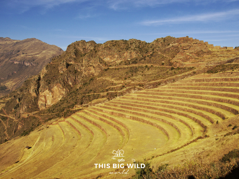 Pisaq has ruins and agricultural terraces at the entrance to the Sacred Valley of the Incas near Cusco.