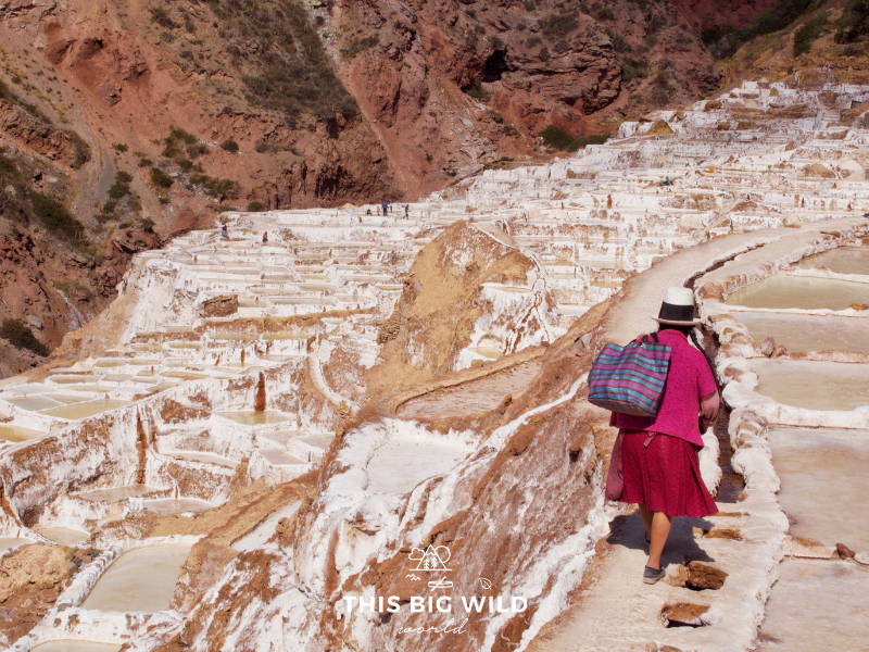 There are nearly 4000 plots of salt in Salineras de Maras in the Sacred Valley near Cusco.