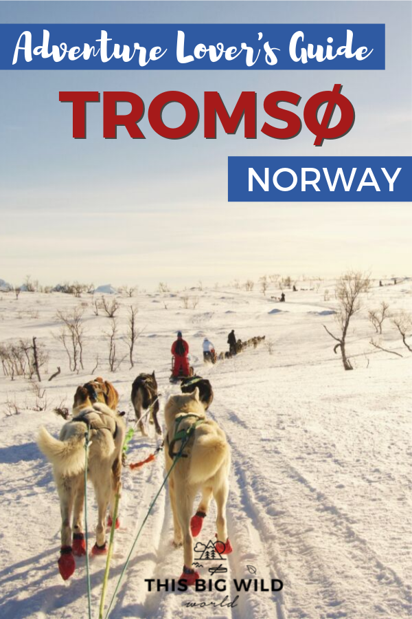 From chasing the Northern Lights to driving a dogsled and a whole bunch in between, Tromso is an adventur lover's dream destination. Find out what to do in Tromso, how to get to Tromso, where to stay in Tromso and more! #tromso #norway #norwaytravel