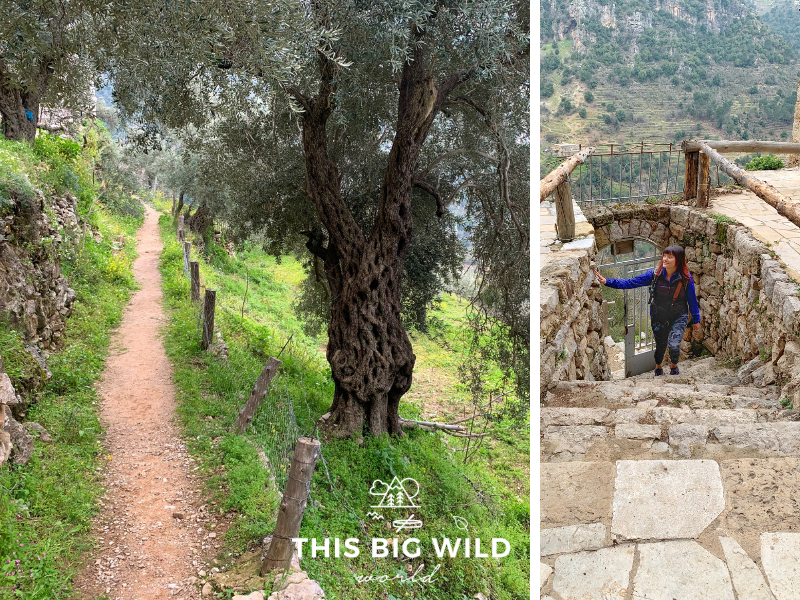 Hike between ancient monasteries and churches on a daytrip to Qadisha Valley from Beirut.