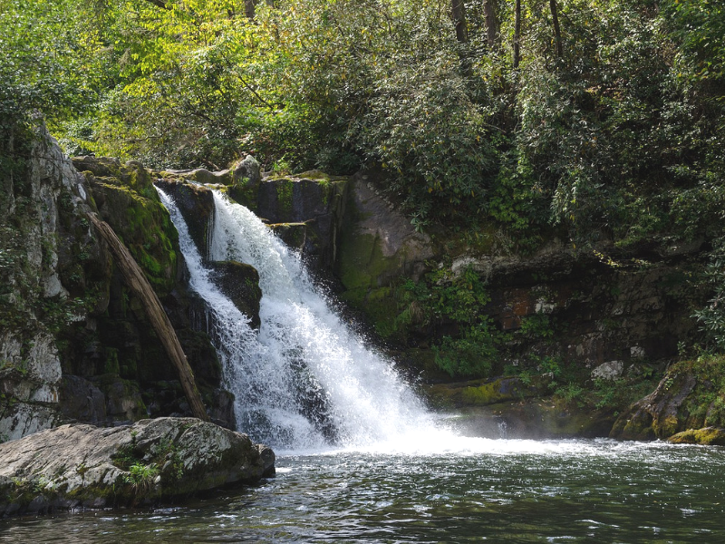 With more than 50 inches of rain per year, Abrams Falls is one of the most dangerous hikes in the US due to drowning and slips/ falls on wet rocks.