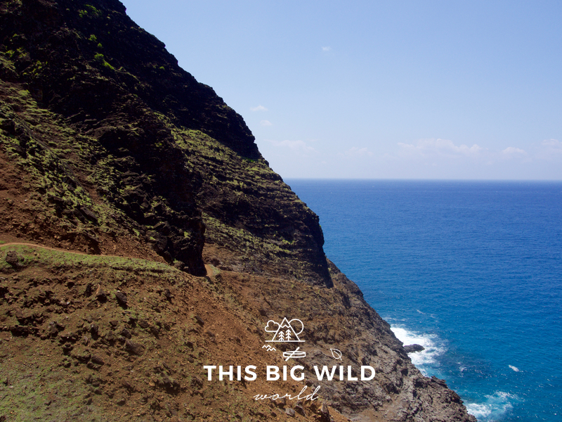 Crawler's Ledge is one of the most dangerous sections of the Kalalau Trail on Kauai's Na Pali Coast. The sheer dropoff into the ocean is challenging even for experienced hikers.