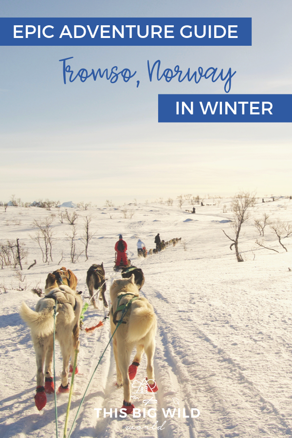 Tromso Norway is an adventure lovers dream! And the fun doesn't stop in the winter. This epic adventure guide to Tromso in winter includes where to stay in Tromso, things to do in Tromso, Tromso tips, and Tromso tour reviews. Also included are tour reviews of dogsledding and chasing the Northern Lights! #Norway #Tromso #Norwaytravel #northernlights #auroraborealis #hiking