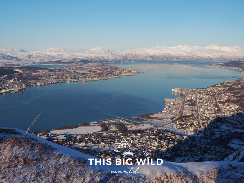 Enjoy the view of Tromso from above by riding the Fjellheisen cable car, with snowcapped mountains in the background and bright blue water surrounding the island.