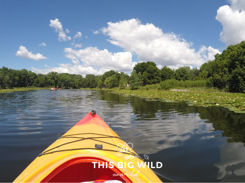 Kayaking is a popular way for Minnesotan to enjoy lake life during the summer!
