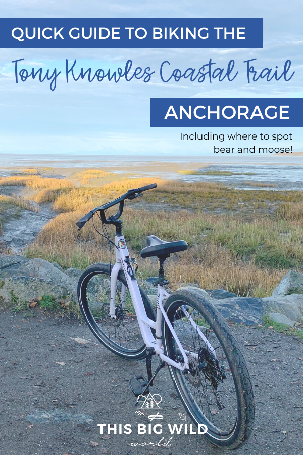 Biking the Tony Knowles Coastal Trail is a must for any visit to Anchorage Alaska. Find out where to rent a bike in Anchorage and what to expect when biking the Anchorage Coastal Trail, including where to see bear, moose, whales and more! things to do in Anchorage Alaska | #usatravel #anchorage #alaska #biking #bicycling #cycling