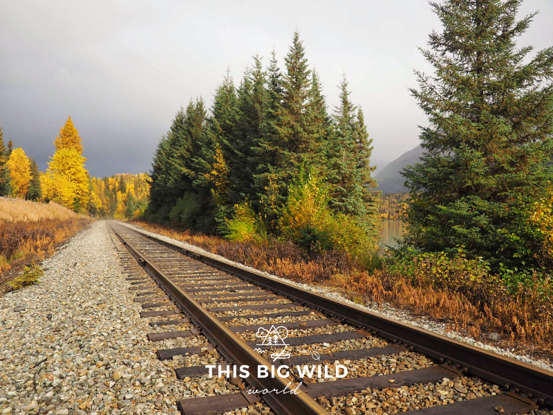 The Alaska Railroad takes passengers from Anchorage through the countryside to destinations like Denali, Seward and more!