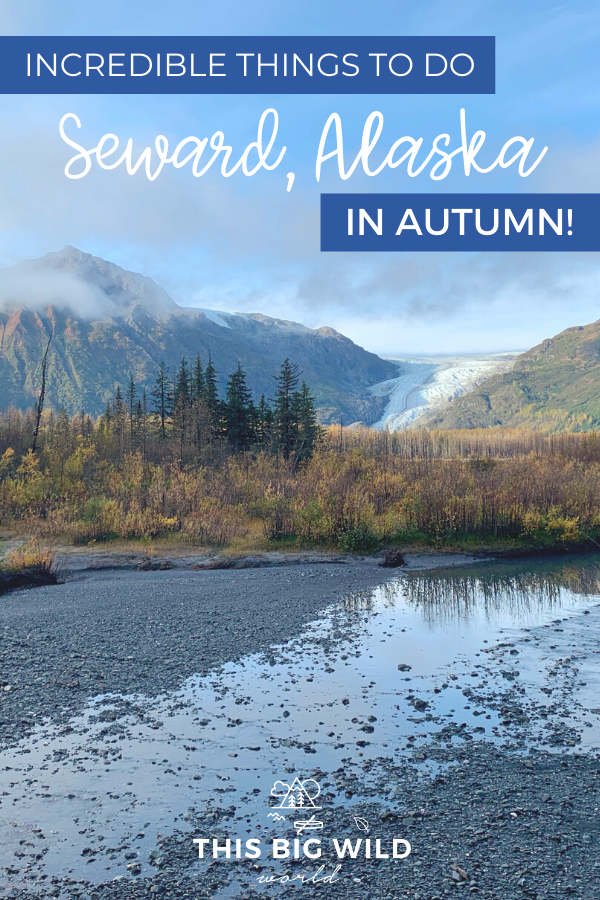 Visitors flock to the charming coastal town of Seward Alaska in the summer, but what's it like in the fall? It's still got all the charm and loads of adventure but without all the crowds! Here are the best things to do in Seward Alaska in September, including where to stay in Seward and where to eat in Seward. #alaska #seward #glacier #hiking #usatravel