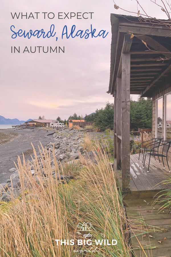 Considering a visit to Alaska in the fall? Make sure that Seward Alaska is on your itinerary! This charming coastal town is the gateway to Kenai Fjords National Park where you can paddle and hike to glaciers, go whale watching,  and much more. Here's what to expect when visiting Seward Alaska in the fall, including things to do in Seward, where to stay in Seward and where to eat in Seward! #alaska #seward #hiking #usnationalparks #usatravel