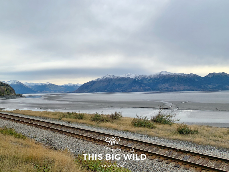 See snowcapped mountains in the distance behind Turnagain Arm at low tide when driving from Anchorage to Seward Alaska. Mudflats are visible along the coastline where the Alaska Railroad tracks run.