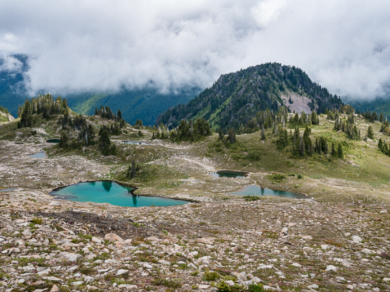 The bright blue waters of the seven lakes are the perfect treat while backpacking along the High Divide Seven Lakes Basin Loop in Olympic National Park.