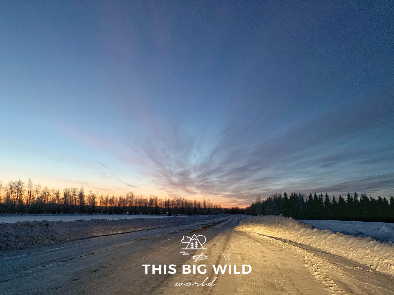 The sky is bright pink and yellow on the horizon in an other bright blue and dark sky as the sunrises as I drove from Levi to Rovaniemi in a rental car.  The horizon is lined with a silhouette of tall pine and fir trees.