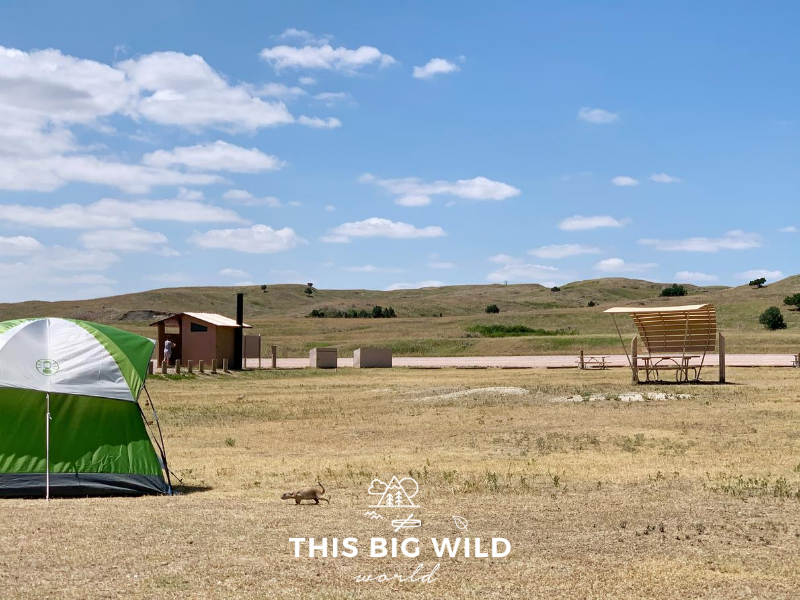 A green and white tent is setup on the left hand side on an open dry grassy area. Behind the tent in the distance is a pit toilet building. On the right is a shaded picnic table. In the distance are rolling green hills and white fluffy clouds in a blue sky. A prairie dog is running across the foreground towards the tent.