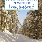 Text: Unforgettable Outdoorsy Things to Do in Winter Levi, Finland. Background is a snow-covered hiking trail lines with pine trees with the sun hitting the trees on the left hand side of the trail in Levi Finland.