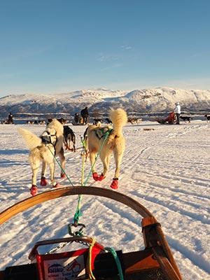 Popular Destinations - Norway