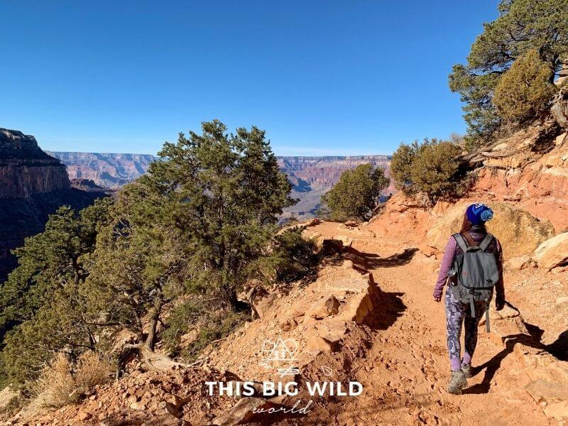In the distance is the Grand Canyon and in the foreground is a reddish sandy trail with green brush on either side. A woman (me) is walking on the trail on the right side of the image in camo leggings, a purple lightweight long sleeve top, vest and blue winter hat carrying a gray backpack.